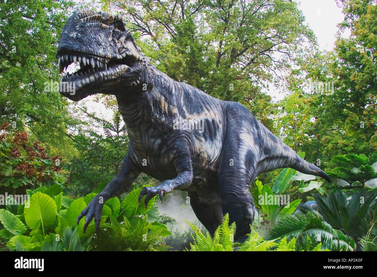 El primer dinosaurio Megalosaurus a ser nombre en 1824, este dinosaurio es desde mediados del período jurásico Growes hasta una longitud de 30 fee Imagen De Stock