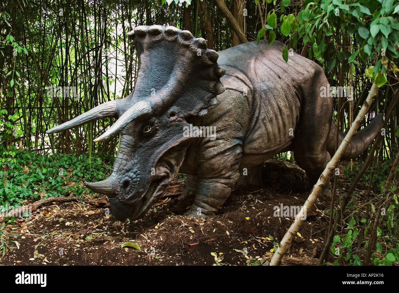 Triceratops que significa tres cuernos dinosaurio cara desde finales del período Cretácico va a una longitud de 29 pies y pesan 5 Imagen De Stock