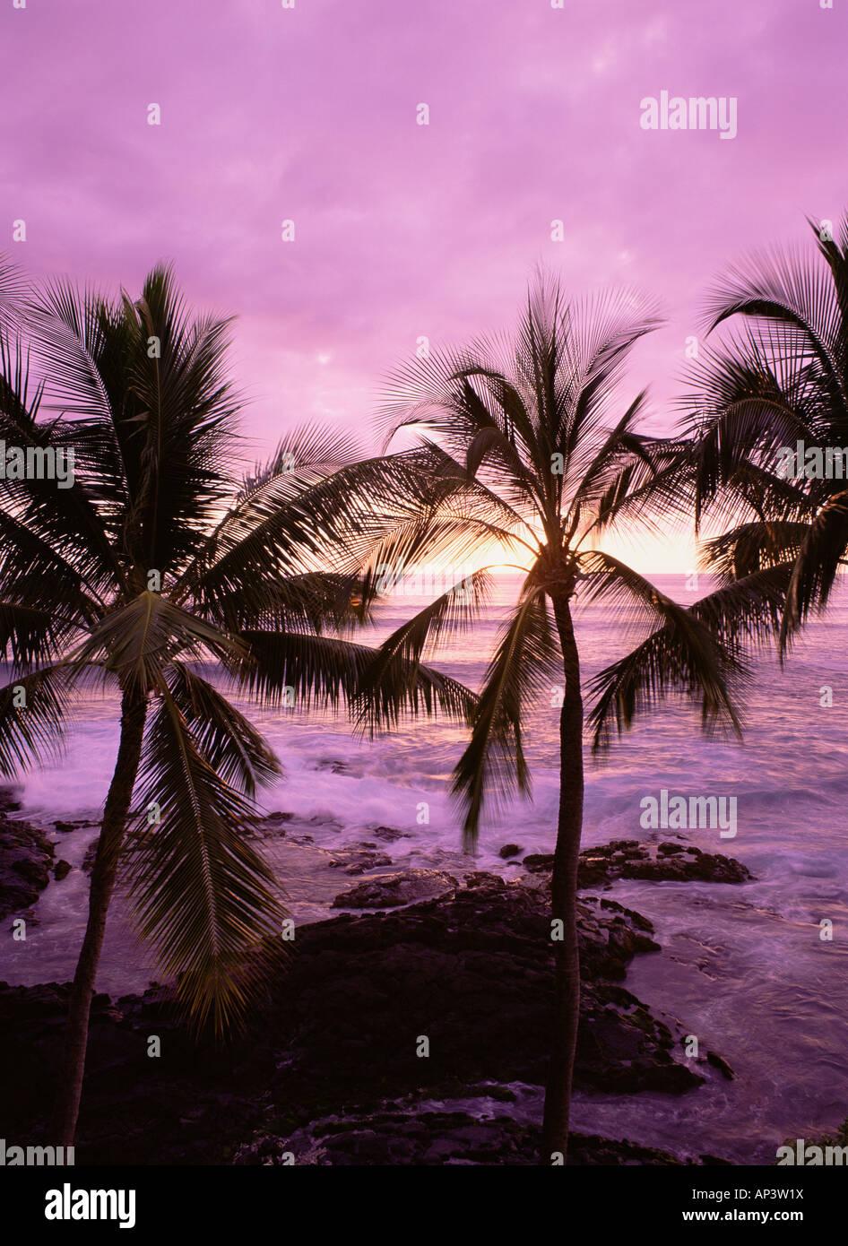 Kona costa Kohala en la isla grande Foto de stock