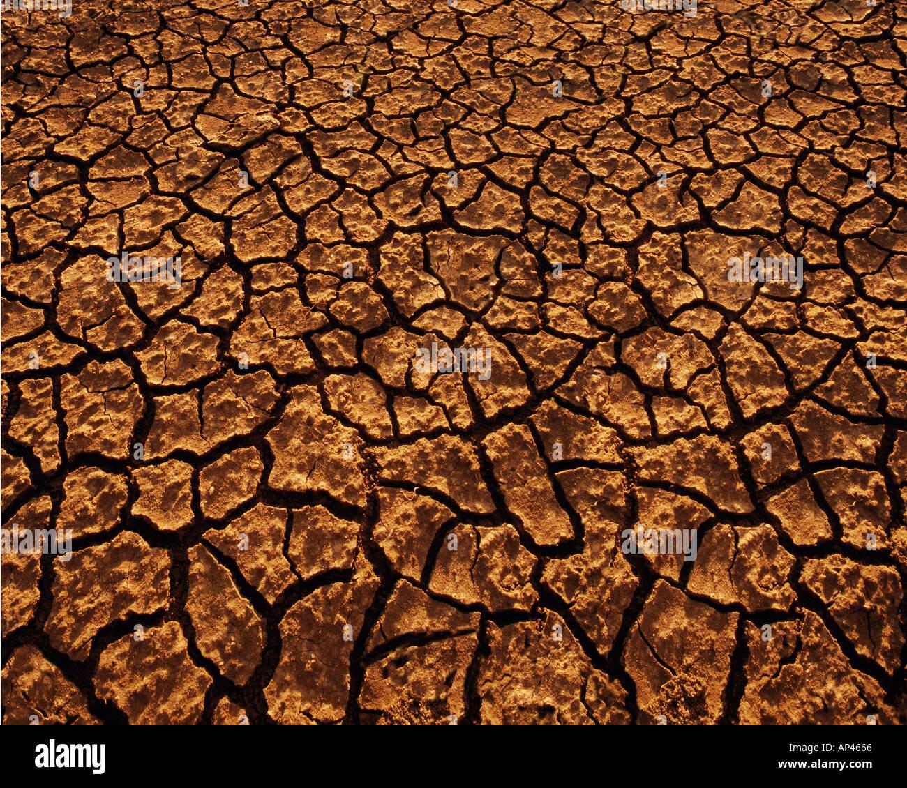 Fondos texturas Imagen De Stock