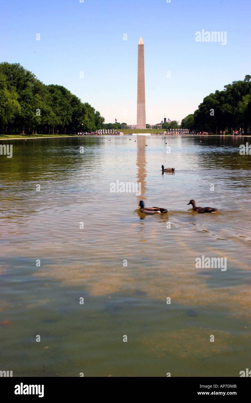El Monumento a Washington y la piscina reflectante Foto de stock