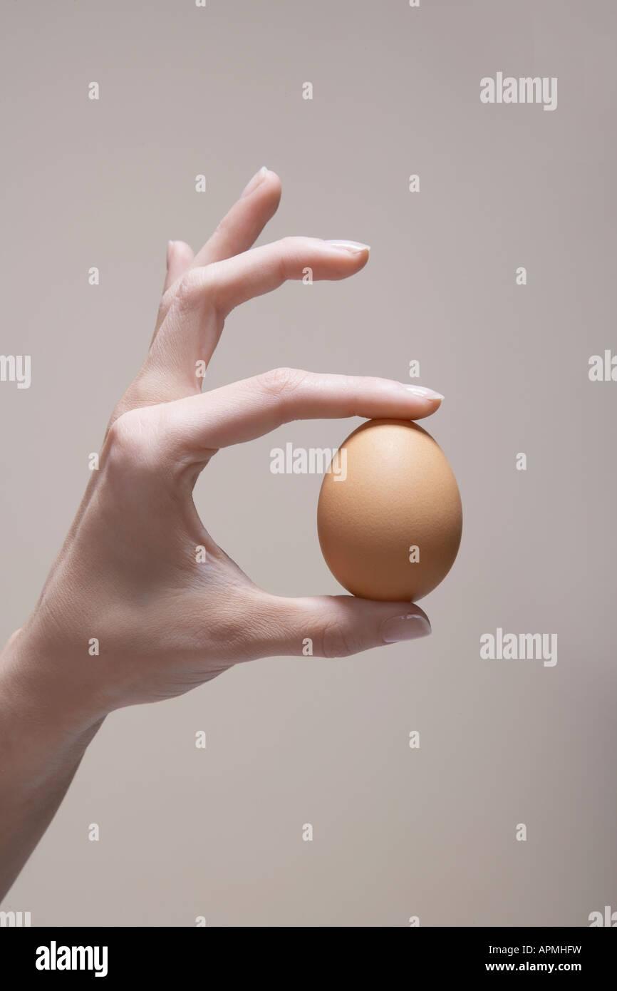Mujer la mano que sostiene el huevo (cerrar) Foto de stock