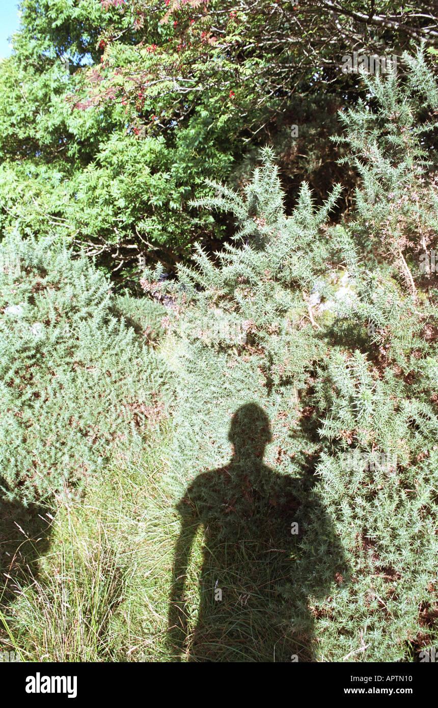 La sombra del hombre en el campo Imagen De Stock