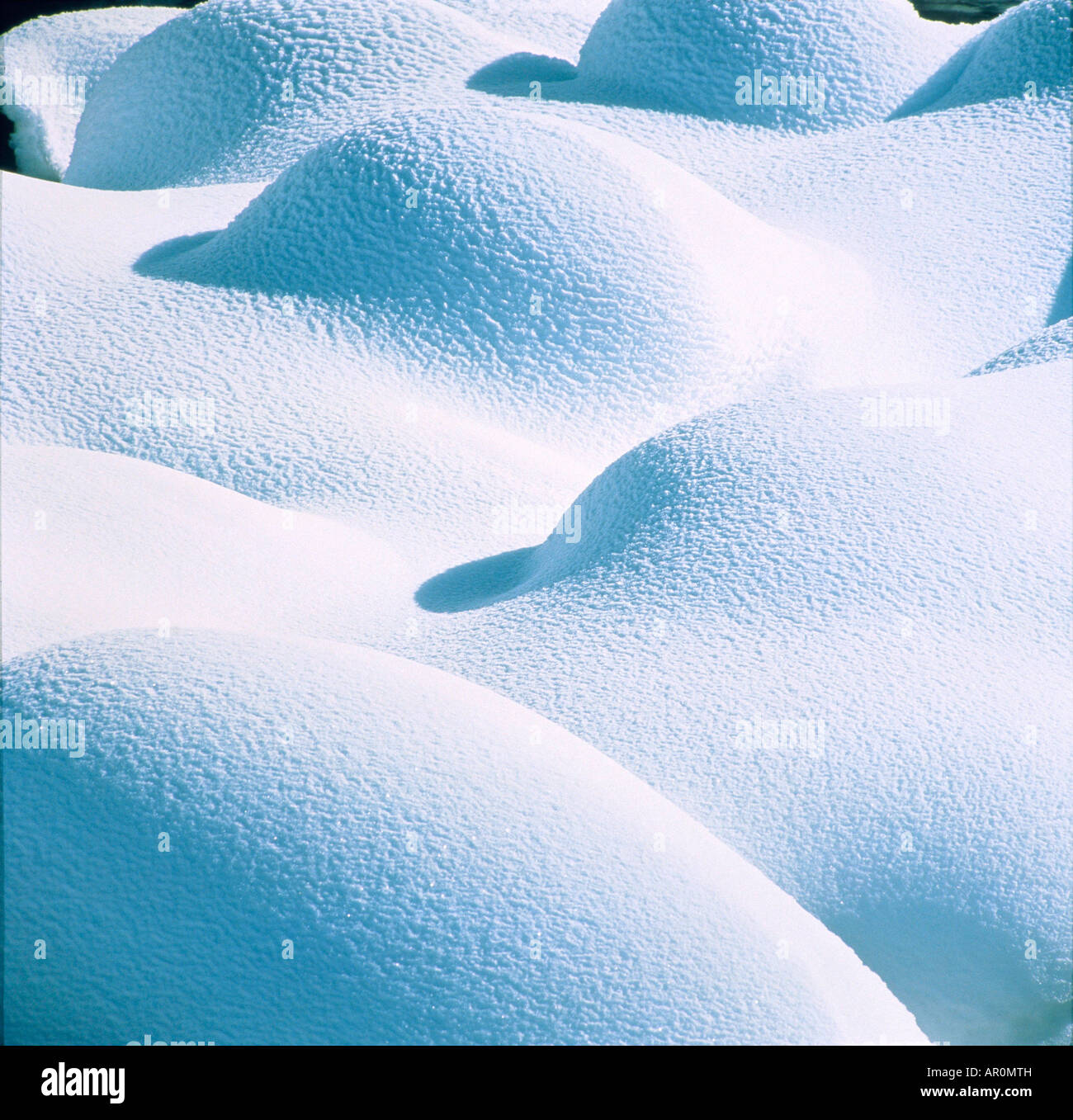 Almohadas de nieve valle Lamar Yellowstone Natl Park Imagen De Stock
