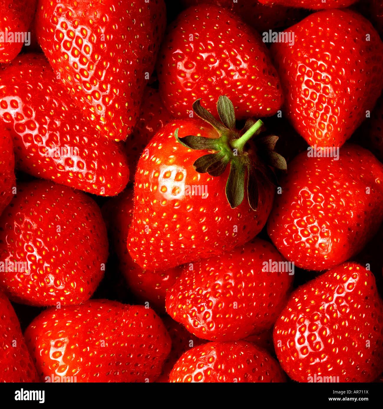 Fresas frescas cerrarán con una fresa 'héroe' EN EL CENTRO DE LA FOTOGRAFÍA Imagen De Stock