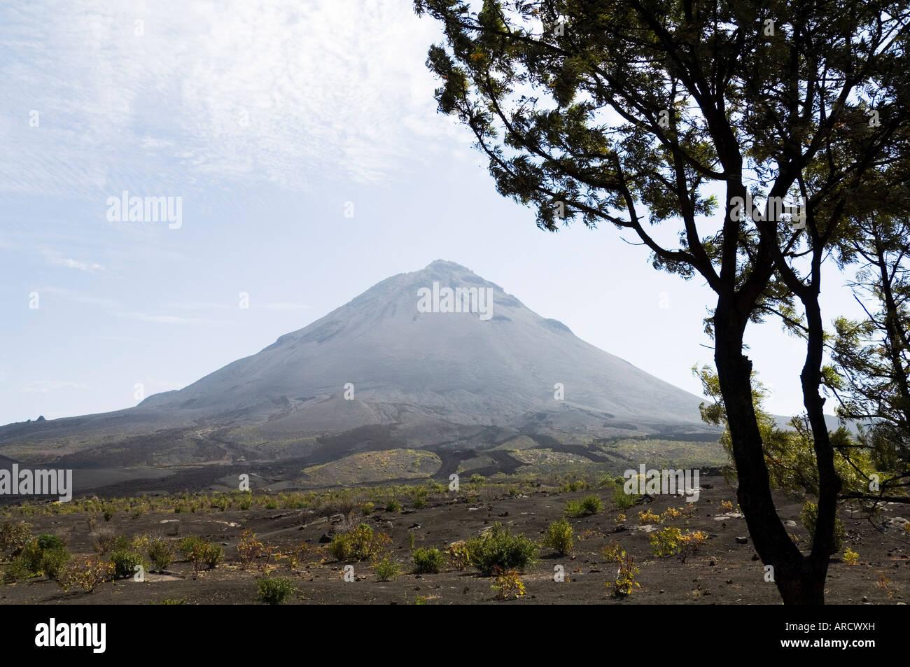 Vista de la caldera del volcán de Pico de Fogo, Fogo (fuego), Islas de Cabo Verde, África Imagen De Stock