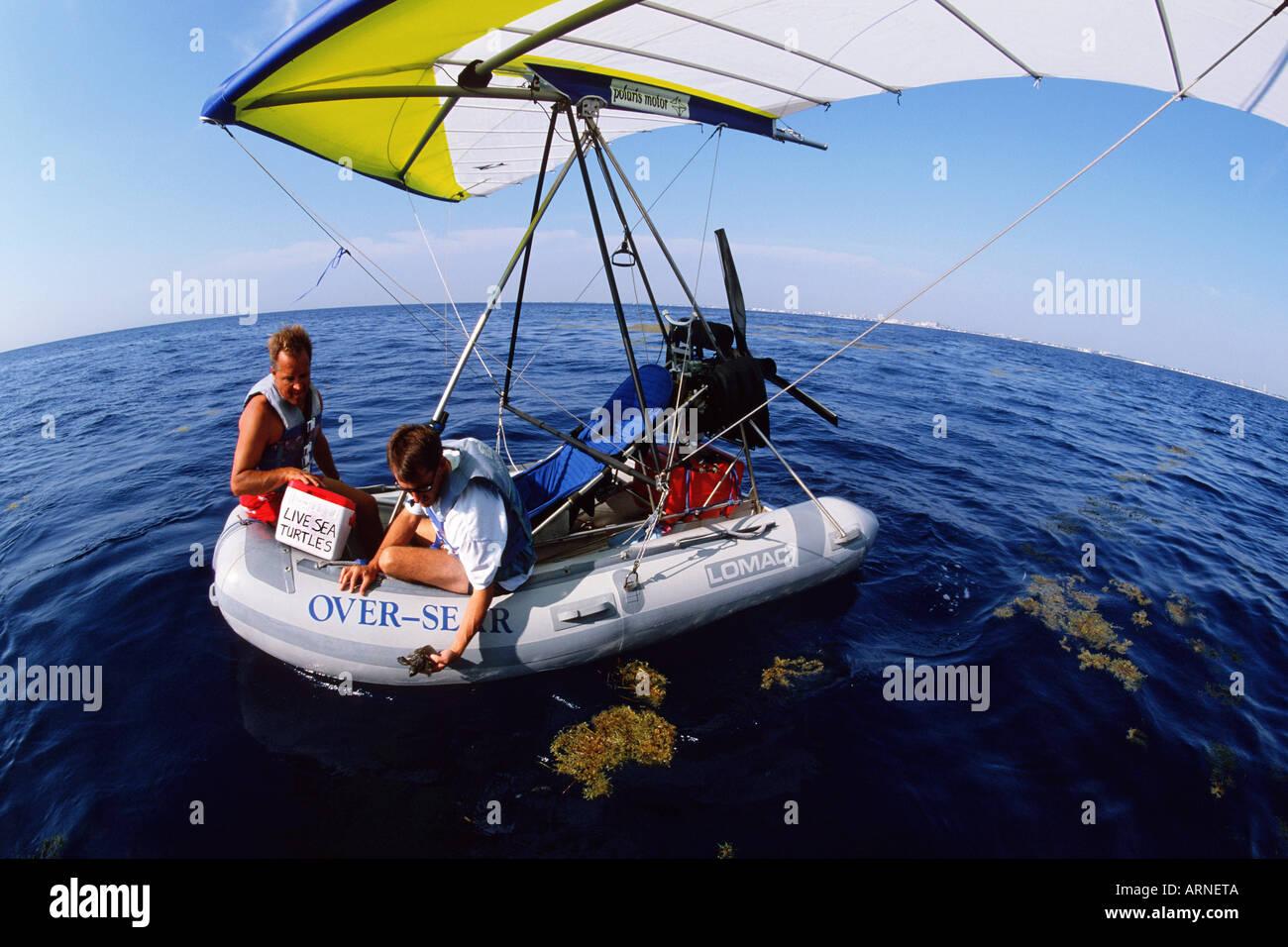 Instalaciones de rehabilitación de tortugas marinas tortugas lesionado ayuda regresar al mar de forma segura los menores son liberados en el océano abierto evitando pesados depredación costera del Océano Atlántico de Florida Foto de stock