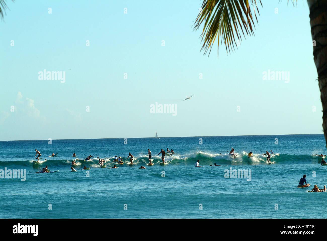 Waikiki beach con muchos surfistas montando olas pequeñas cerca de la costa Foto de stock