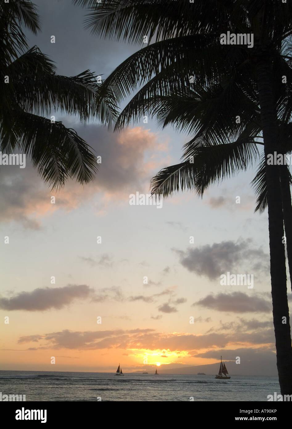 Dos palmas están perfilados contra un hermoso atardecer off reinas playa en Waikiki. Foto de stock
