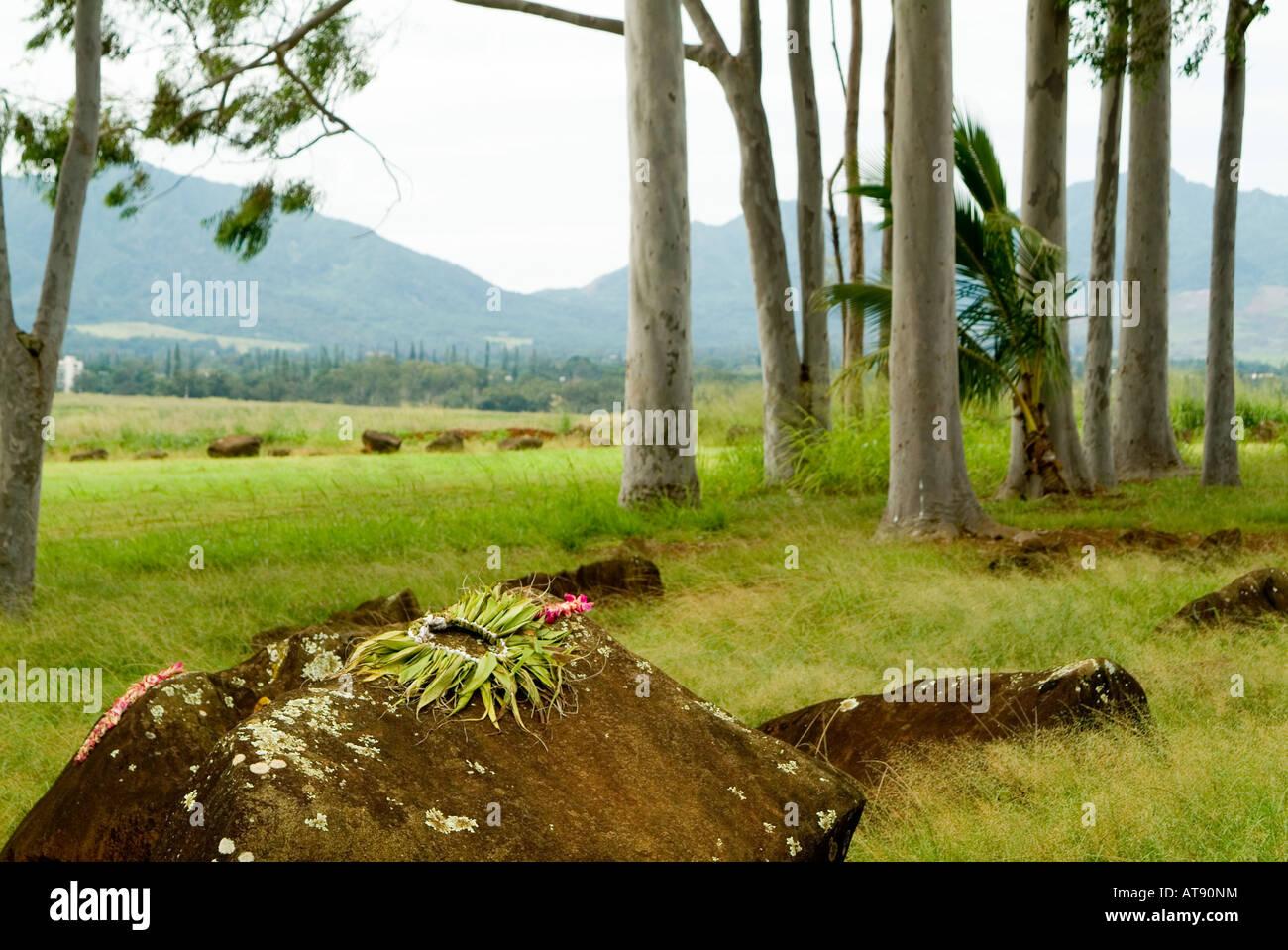 Estado Kukaniloko monumento histórico (piedras) de parto real en Wahiawa, Oahu. Close-up de piedra con lei ofrendas. Foto de stock