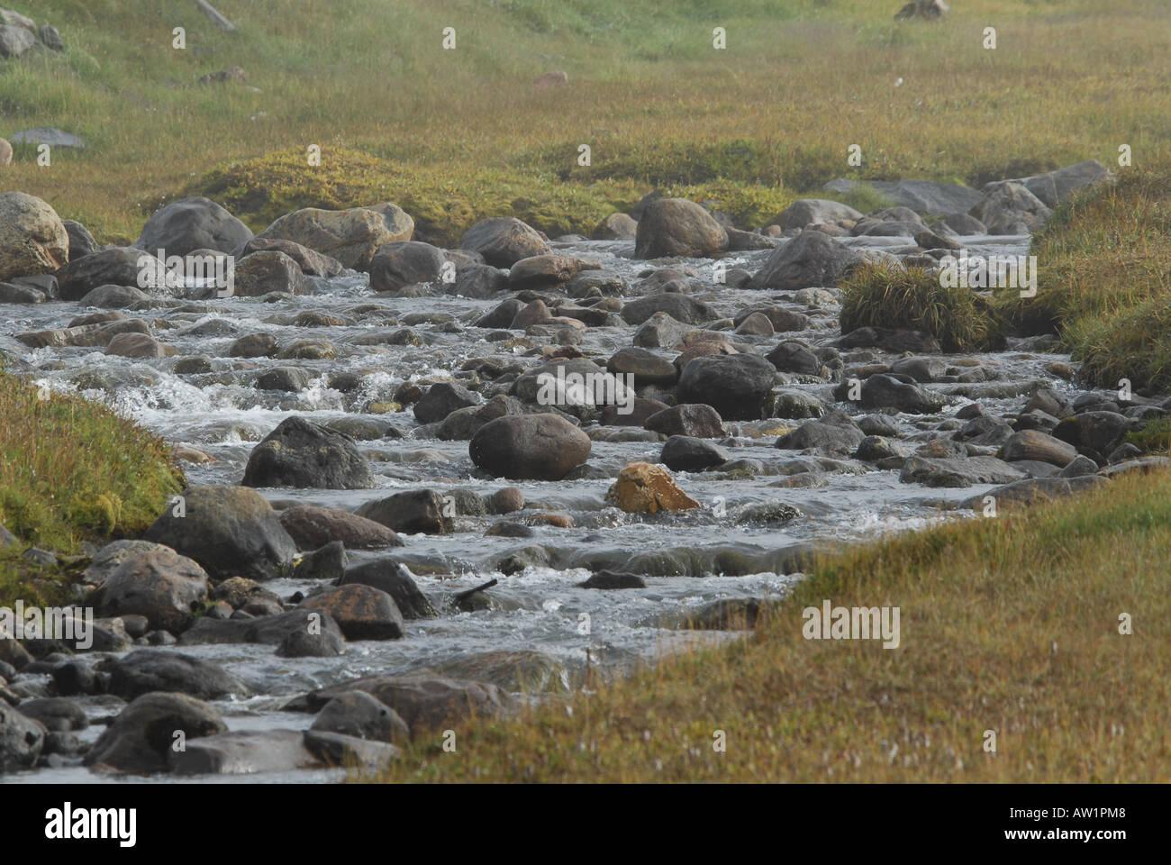 Sitio arqueológico de Thule en Salmon Creek, el estanque de la isla de Baffin de admisión alto Ártico Canadá turísticos remotos aislados Senderismo Senderismo la niebla rock rockly lanza playa fluvial Imagen De Stock