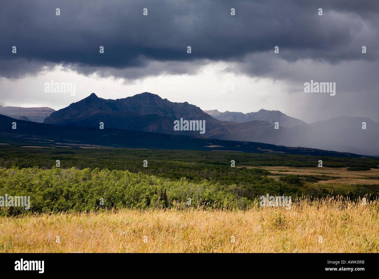 Tormenta de lluvia sobre Spread Eagle Mountain en Canadian Rockies Alberta Canada Imagen De Stock
