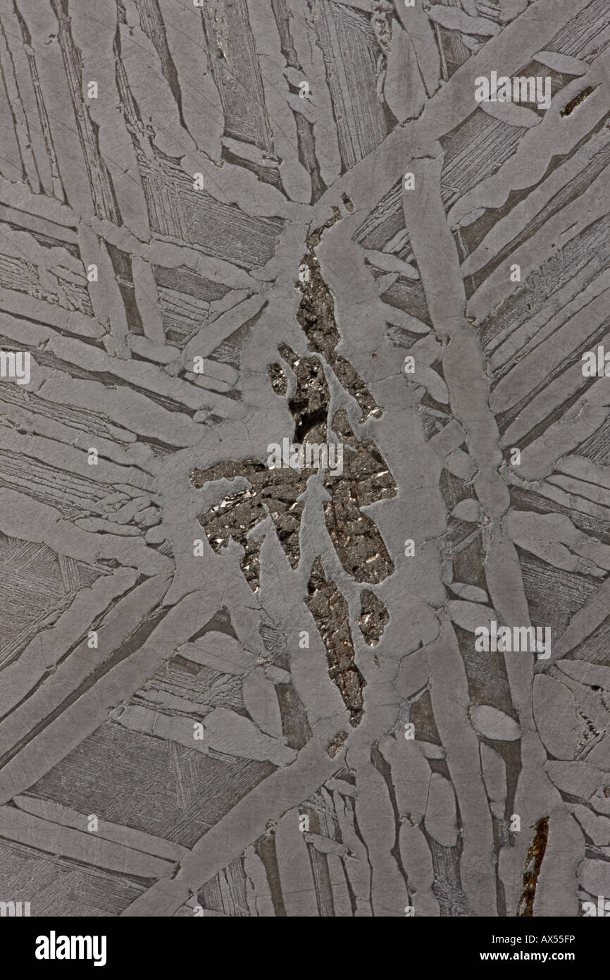 Sección transversal de meteoritos Seymchan - San Petersburgo Rusia Laboratorio paleontológico Imagen De Stock