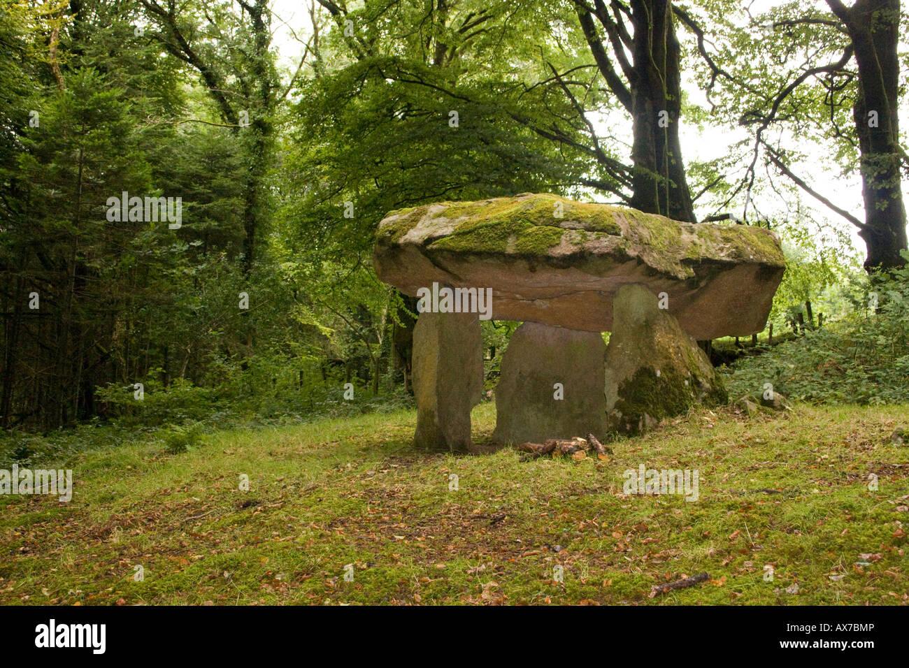 Gwal y Filiast Dolmen cerca Llanboidy en Carmarthenshire, Gales.Woodland sitio encantado. También llamado Arthur's Table. Foto de stock