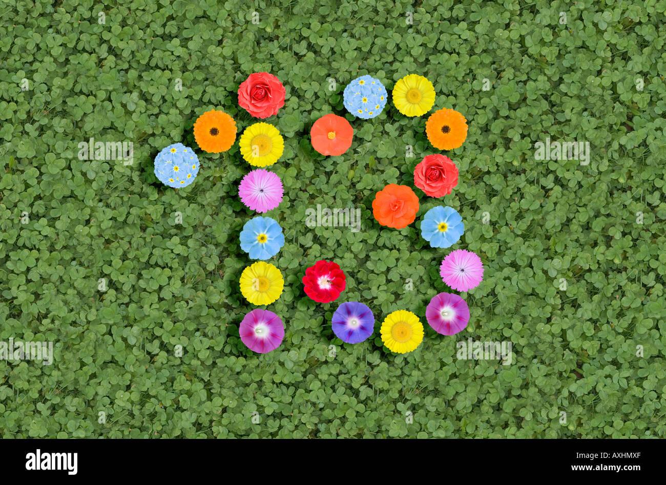 Número 13 escrito con flores. Imagen De Stock