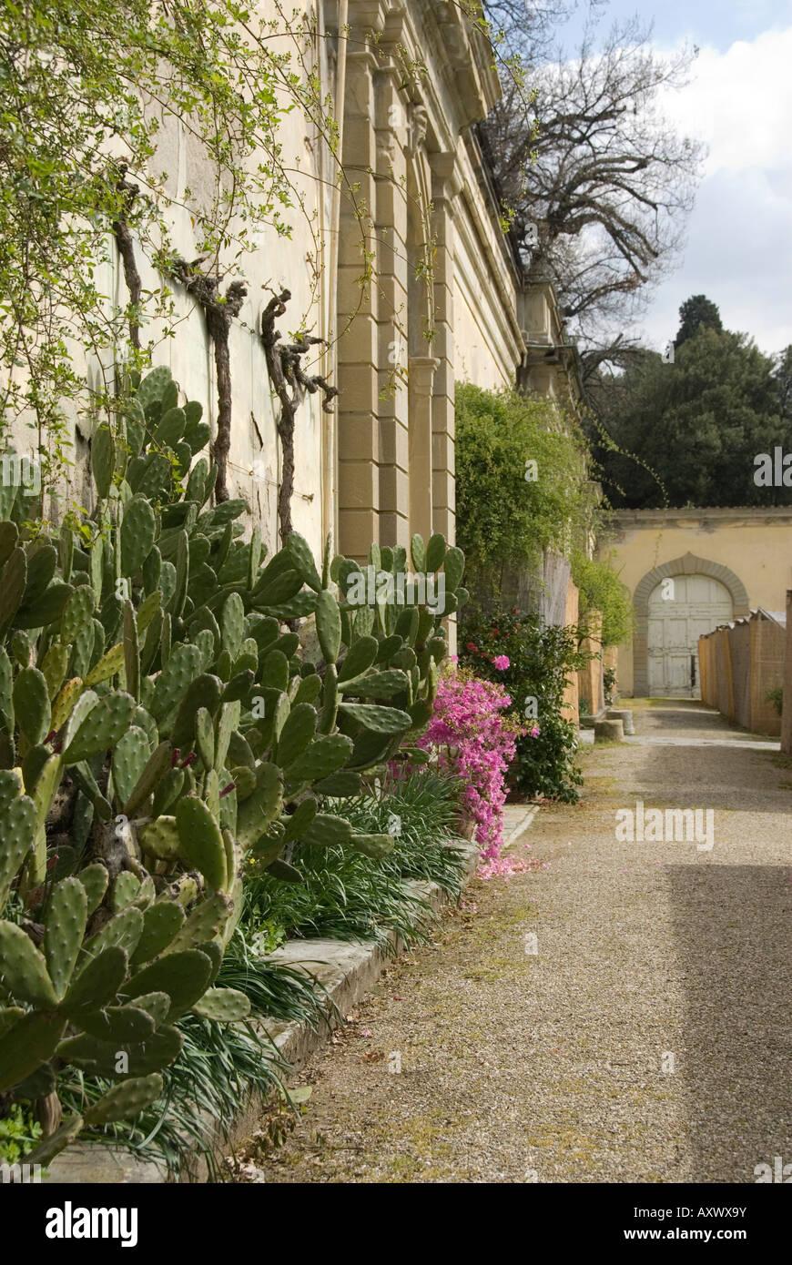 La pared posterior del jardín de la Villa Medici de Castello, Sesto Fiorentino, Florencia y la Toscana Imagen De Stock