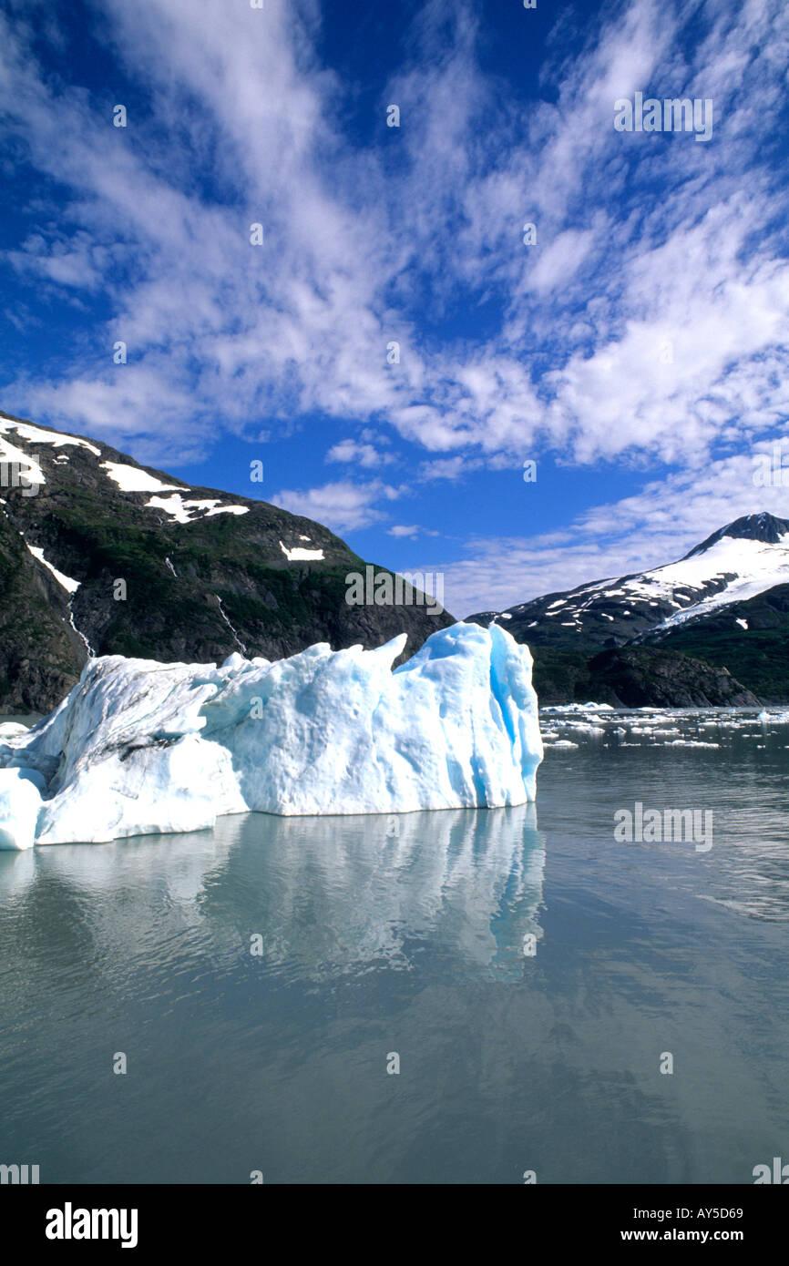 Los glaciares y icebergs azules maravilloso glaciar Portage Alaska Foto de stock