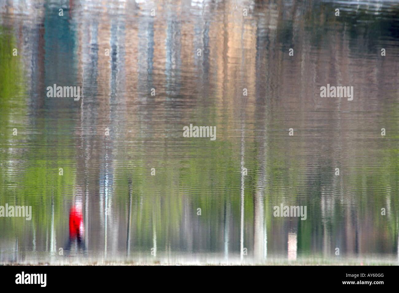 La reflexión del hombre caminando por el lago de perro Imagen De Stock