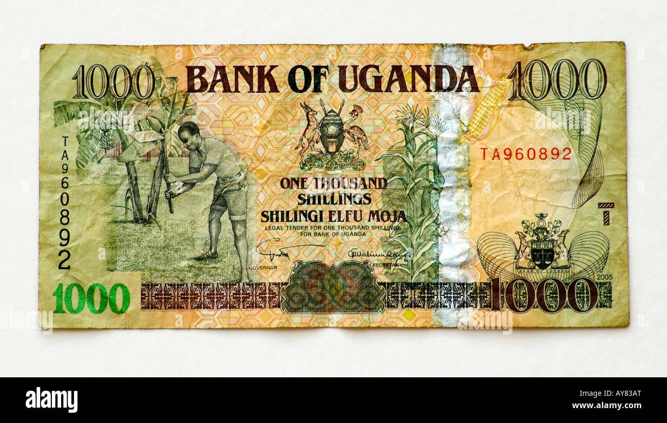 Uganda Chelín 1000 Bank note Imagen De Stock