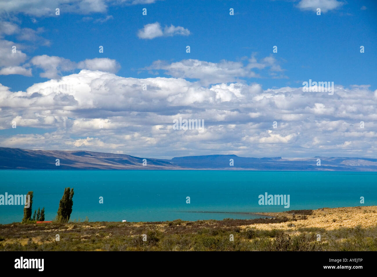Lago Argentino cerca de El Calafate, Patagonia Argentina Foto de stock