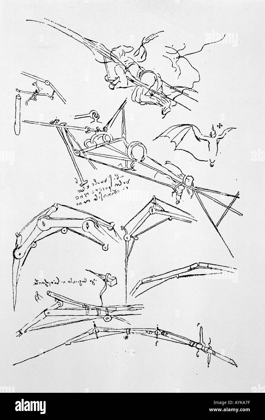 Leonardo bocetos Imagen De Stock