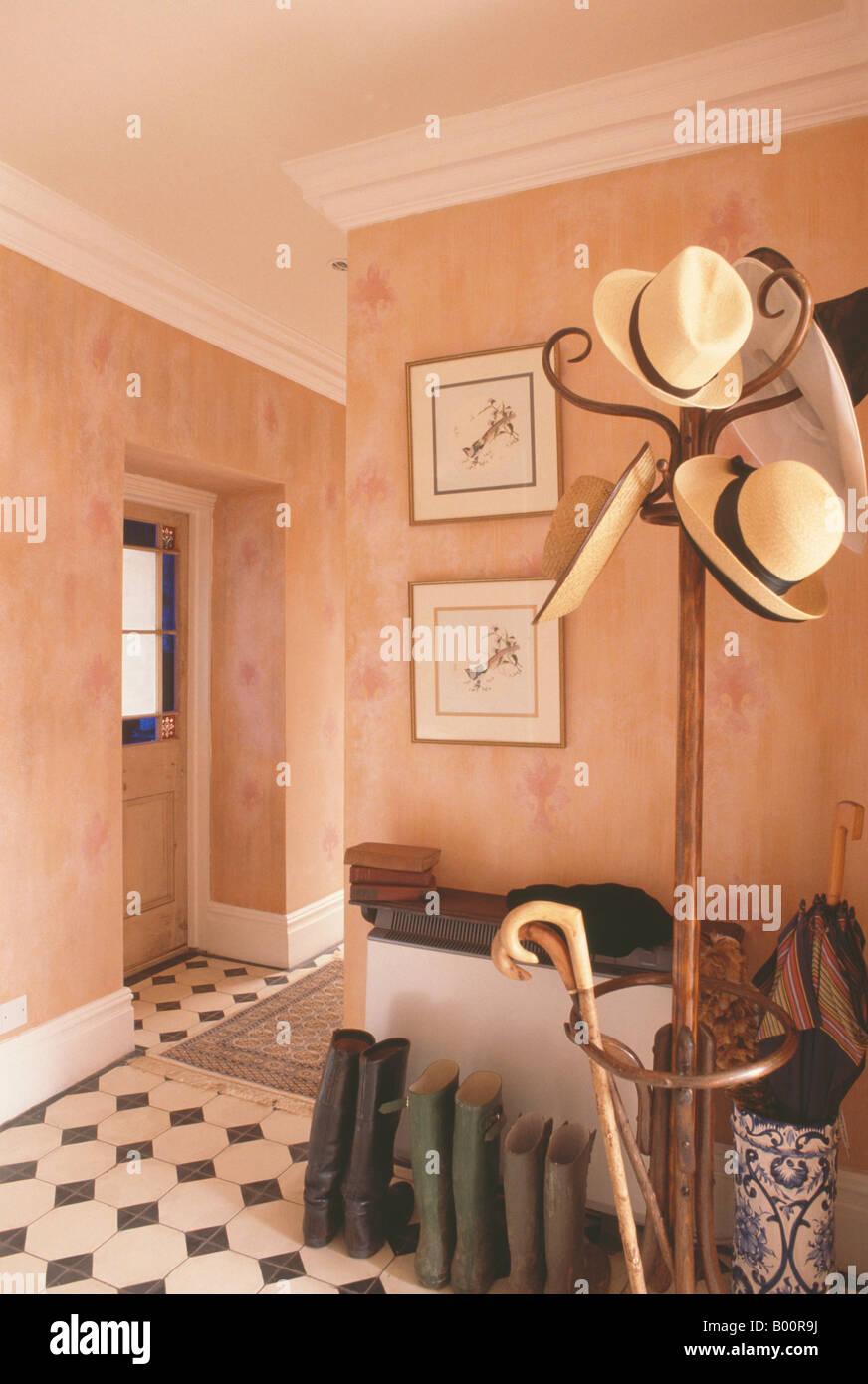 Sombreros de paja y bastones de bentwood hatstand junto a botas en efecto  pintura paredes terracota c99ab5a0728