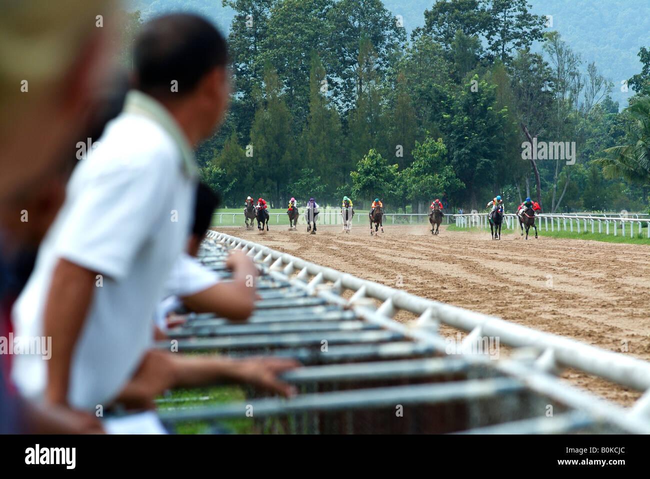 Los espectadores cheer durante una carrera de caballos en la pista en Chiang Mai, Tailandia. Foto de stock