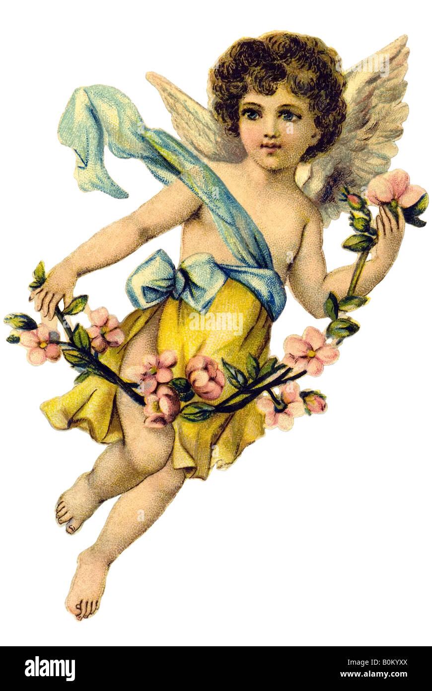 Angelboy con flor de cerezo rama alemana del siglo XIX. Imagen De Stock