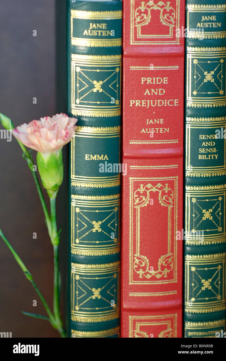 Reservar las espinas, Jane Austen Imagen De Stock