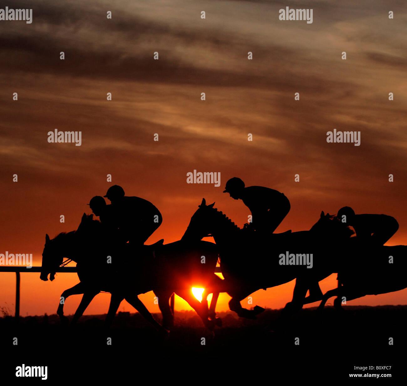 Caballos siluetas contra la puesta de sol en una carrera de noche reunión en el Hipódromo de Towcester Imagen De Stock