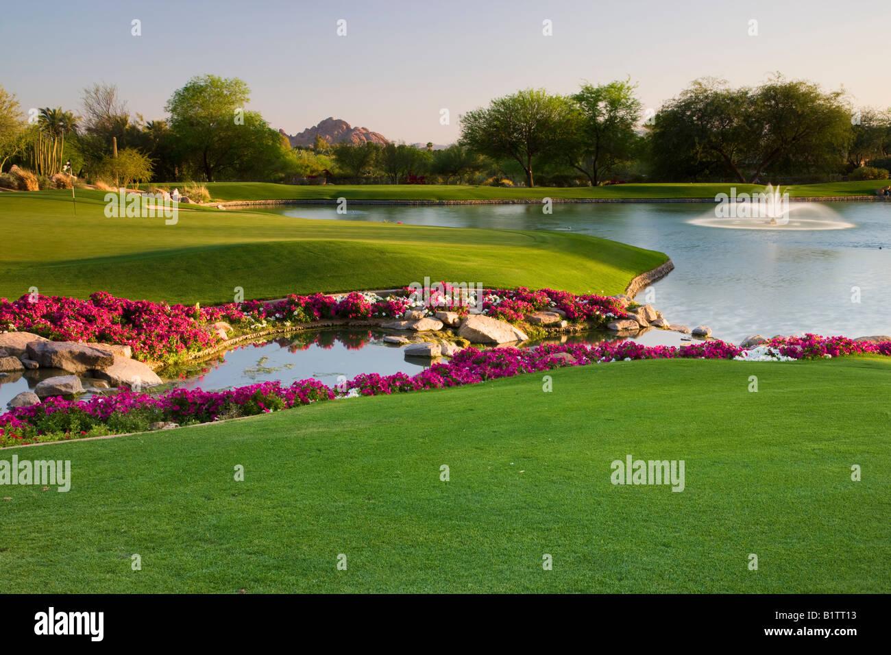 El 7º hoyo en la Canyon Golf Course en el Phoenician Resort en Scottsdale, Arizona Foto de stock