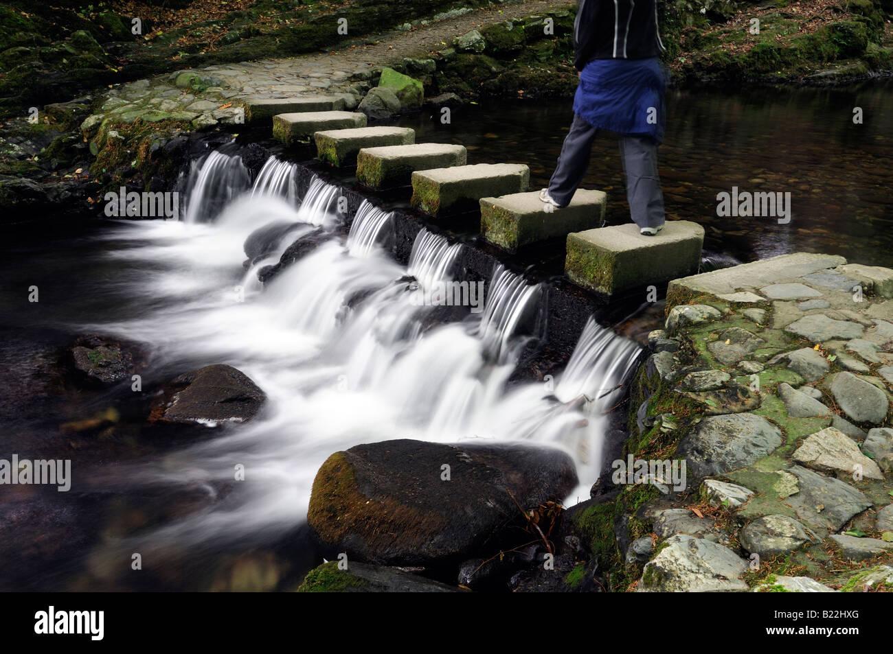 Mujer caminando sobre Stepping Stones pasarela peatonal cruza cruzar el río shimna tollymore condado de Down en Irlanda del Norte Foto de stock