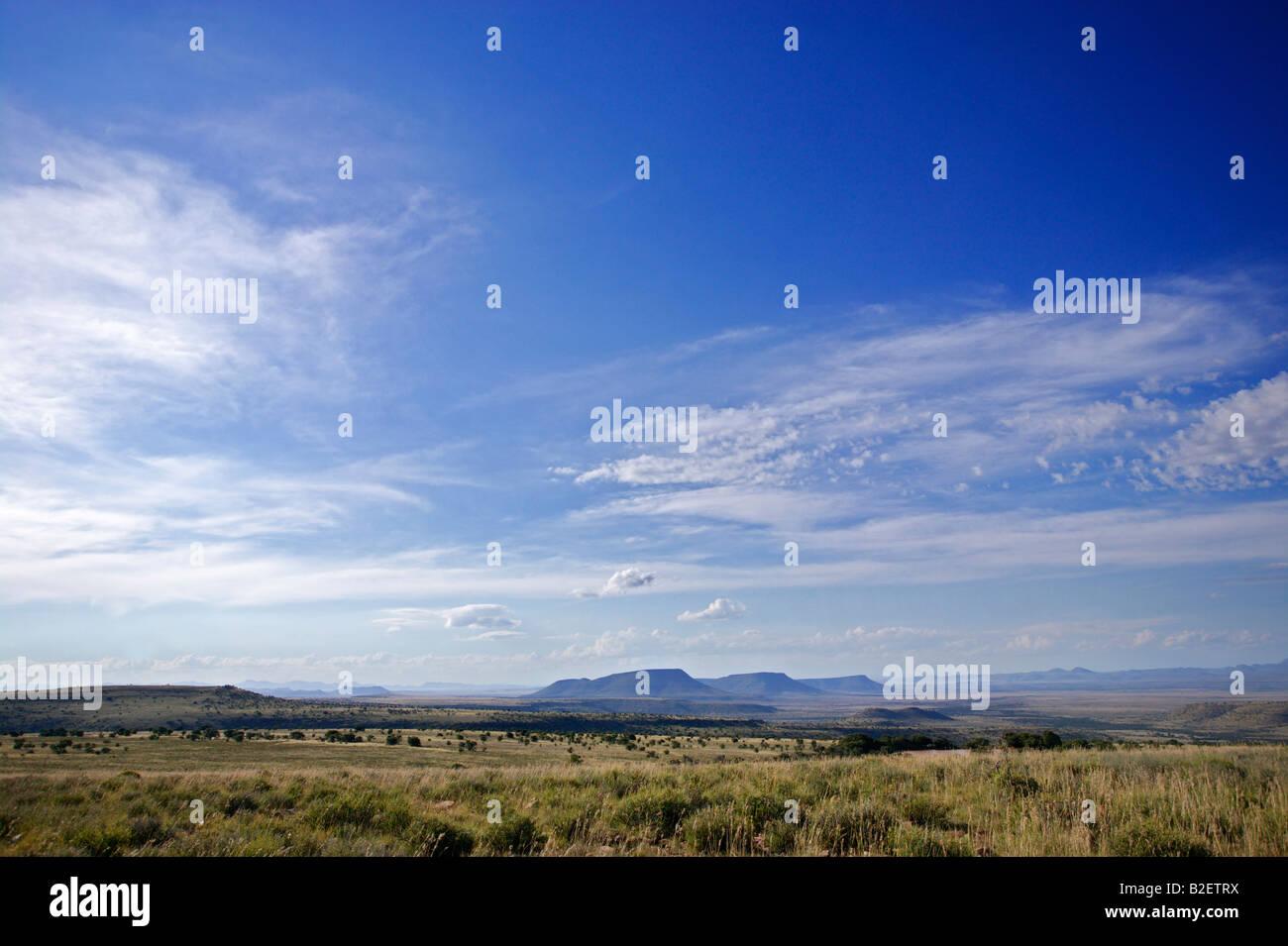 Karoo highveld paisaje en el Parque Nacional cebra de montaña Foto de stock