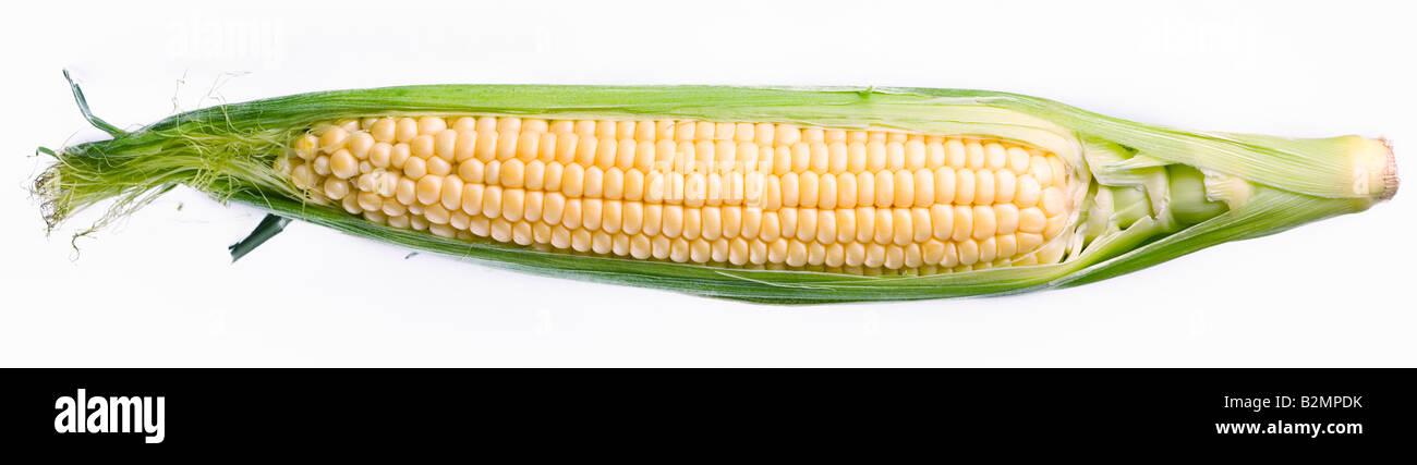 maíz Imagen De Stock