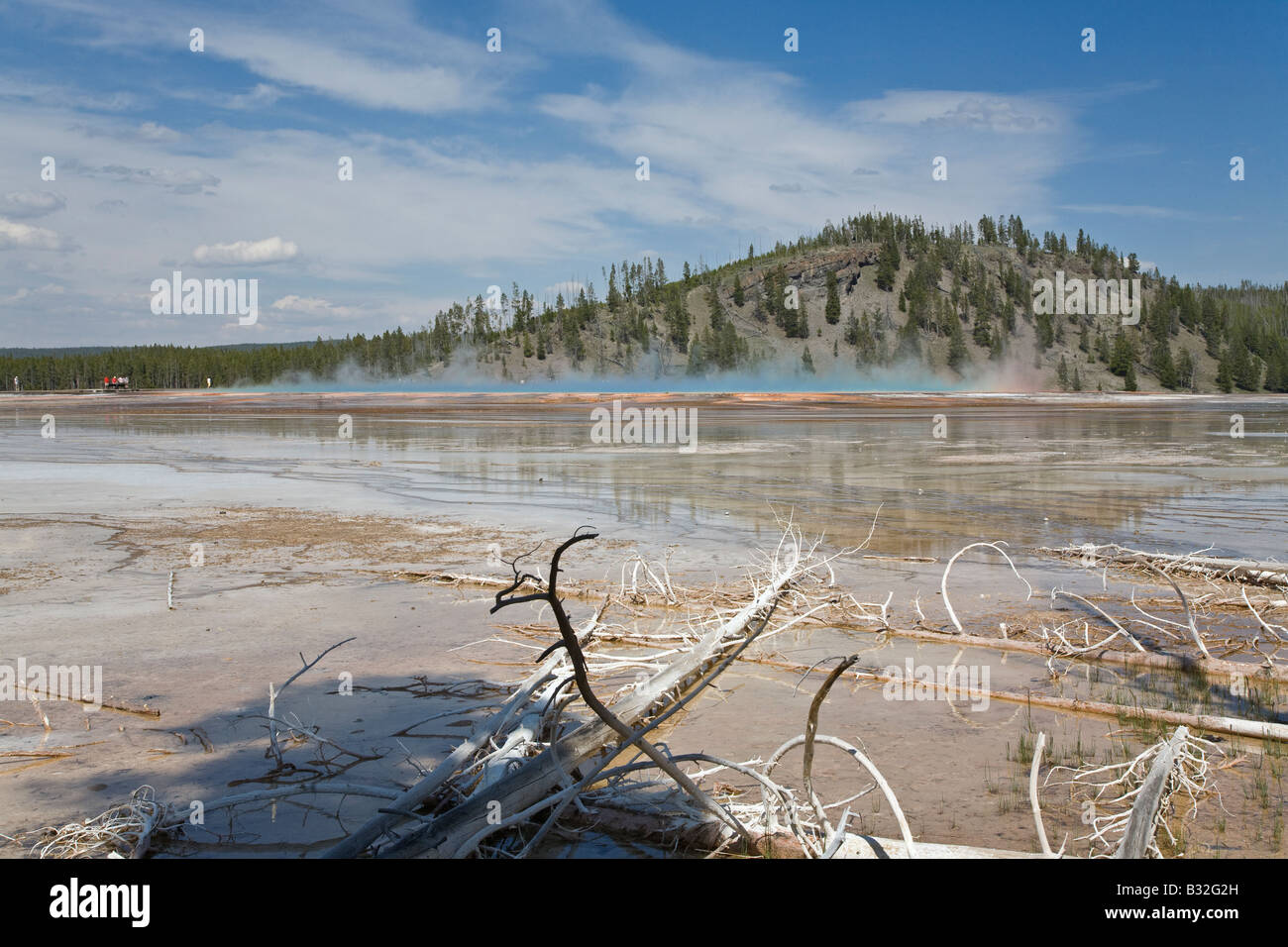 GRAND Prismatic Spring, en el Midland cuenca géiser del Parque Nacional Yellowstone, Wyoming Foto de stock