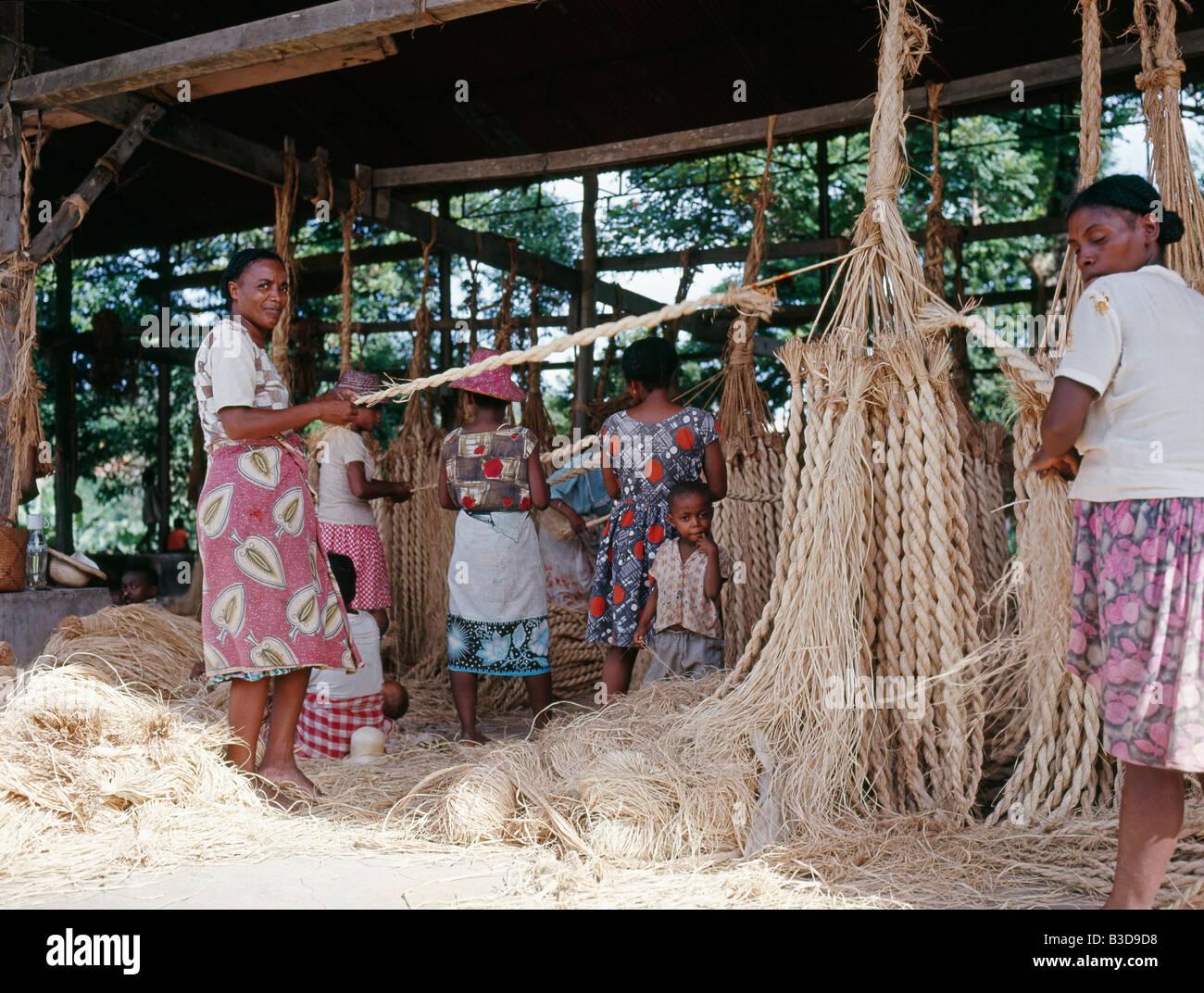 Tressage de cordes dans le sud de Madagascar Une tresse est ensamble de la onu de paquets de fibras au moins trois selon onu schéma ré Foto de stock