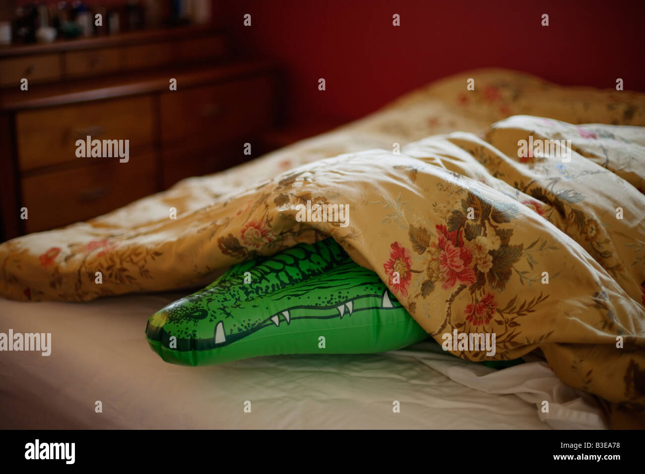 Serie de cocodrilo inflable dormitorio temores Imagen De Stock