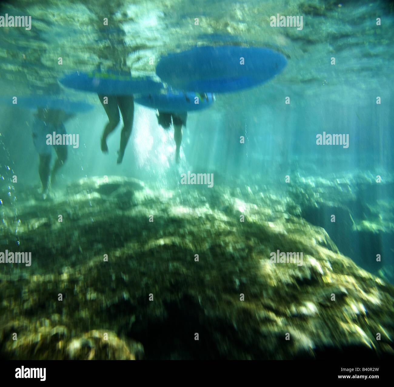 Los tubérculos entrar en las aguas claras de Ginnie Springs antes flotando en el Río Santa Fe, Florida Foto de stock