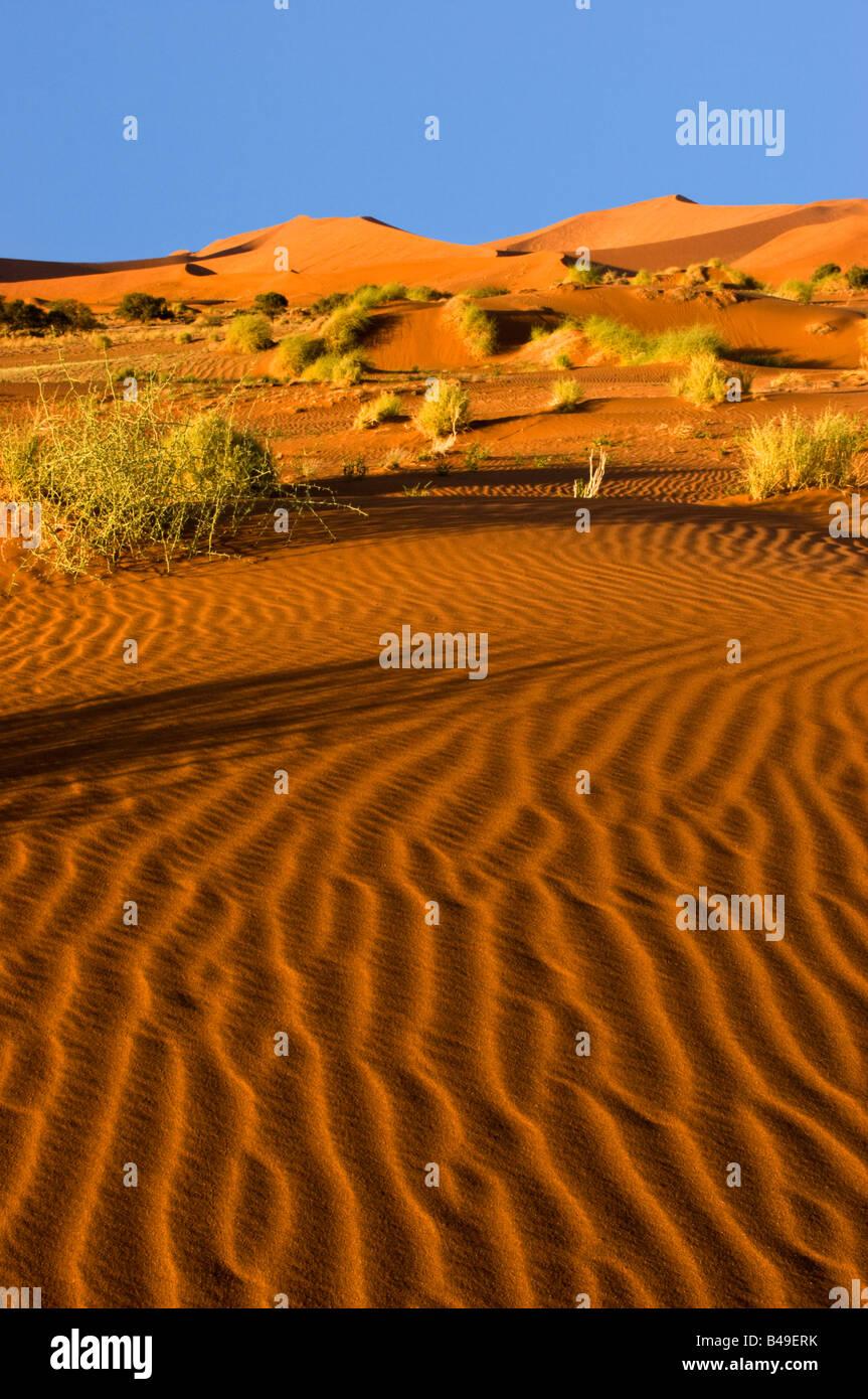 Las dunas de arena en el Parque Nacional Namib-Naukluft, Namibia Imagen De Stock