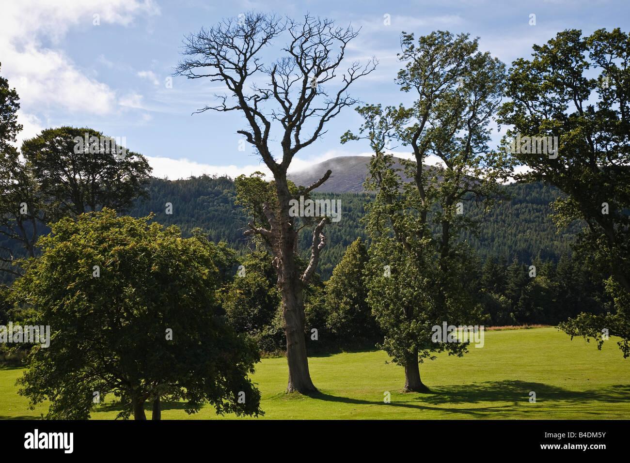 Tollymore parque cerca de Newcastle, las Montañas Mourne, Condado de Down, Irlanda del Norte Foto de stock