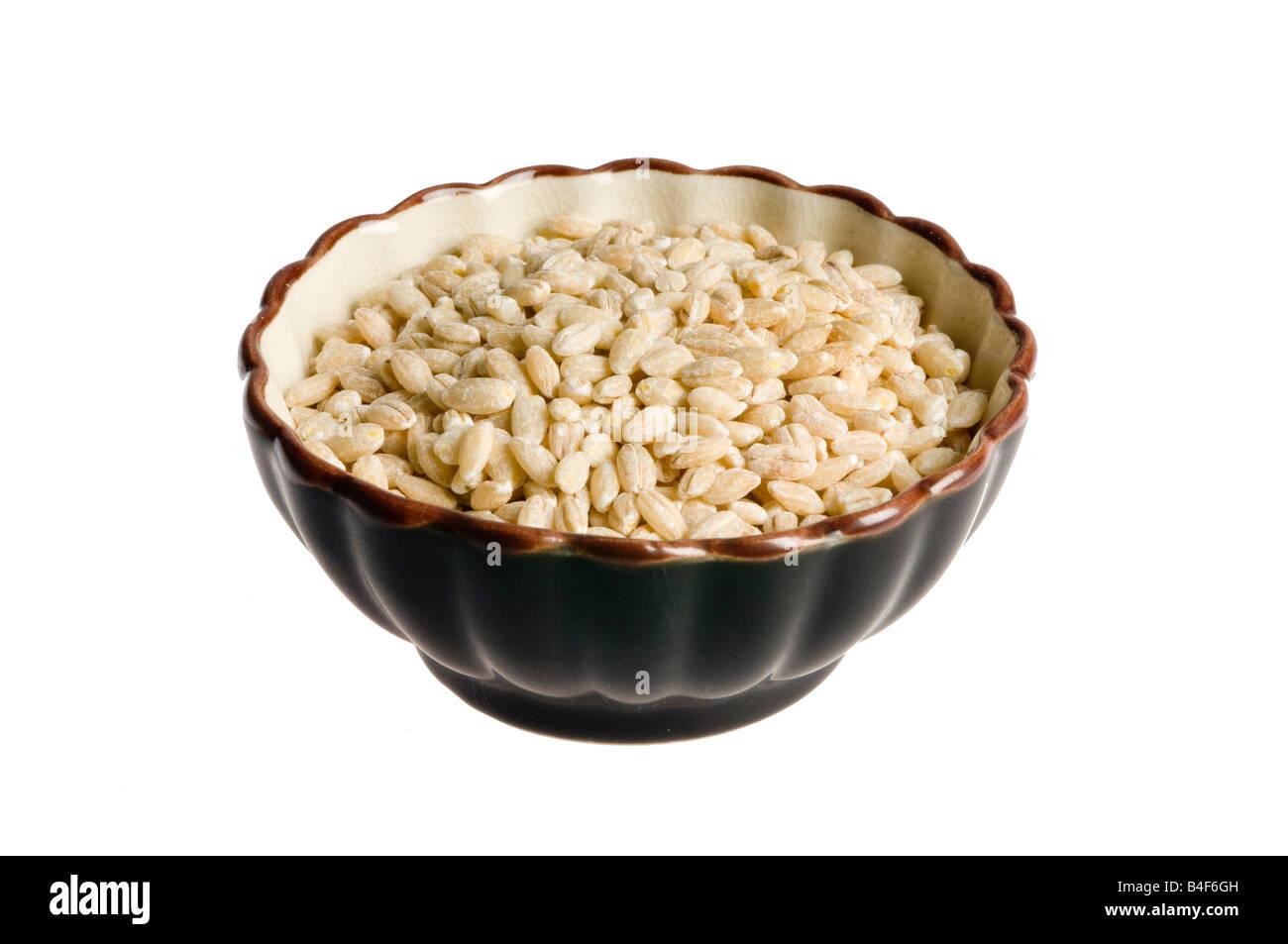 tazón de fuente de la cebada Imagen De Stock