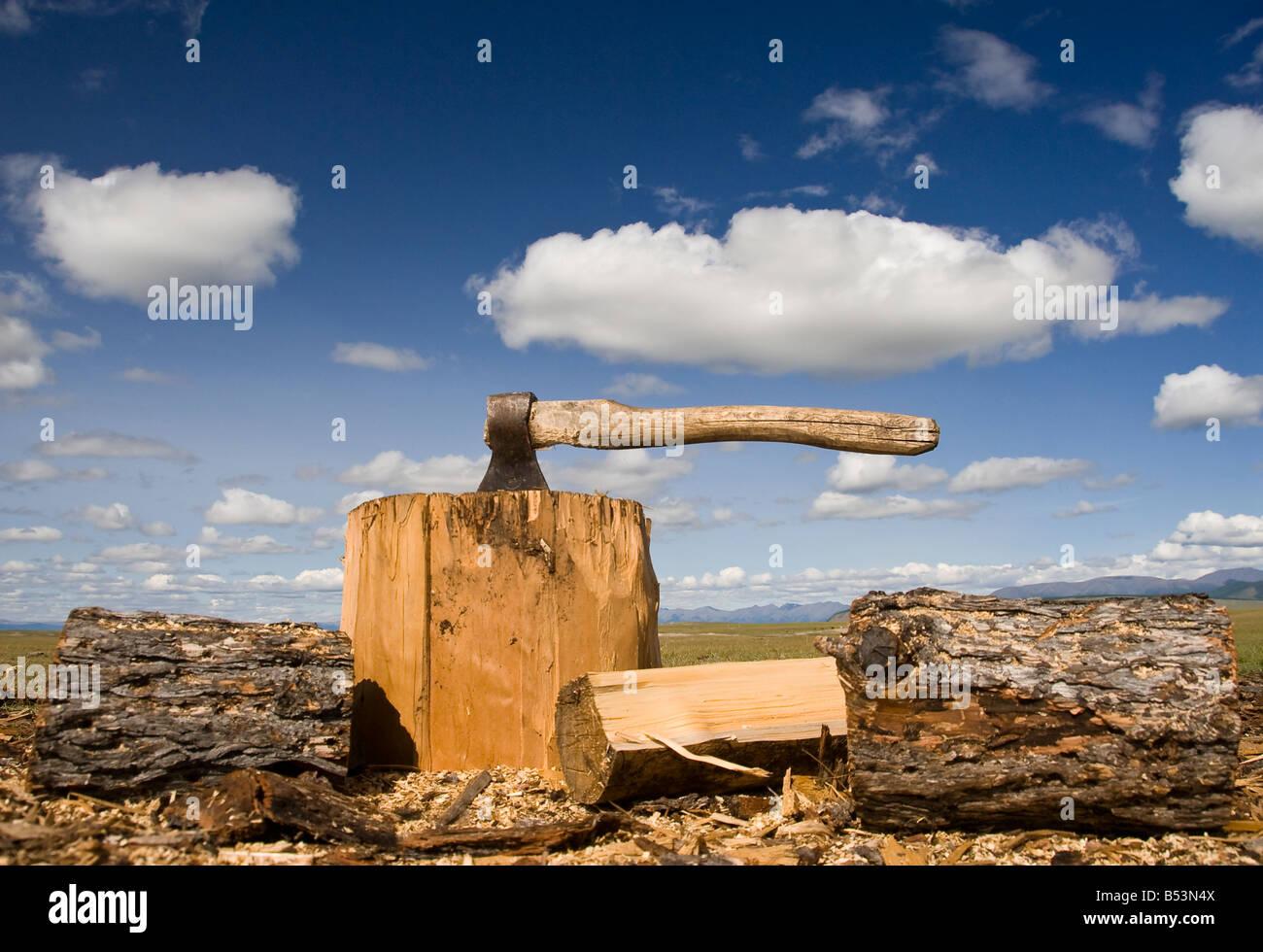 Ax norte de Mongolia Imagen De Stock