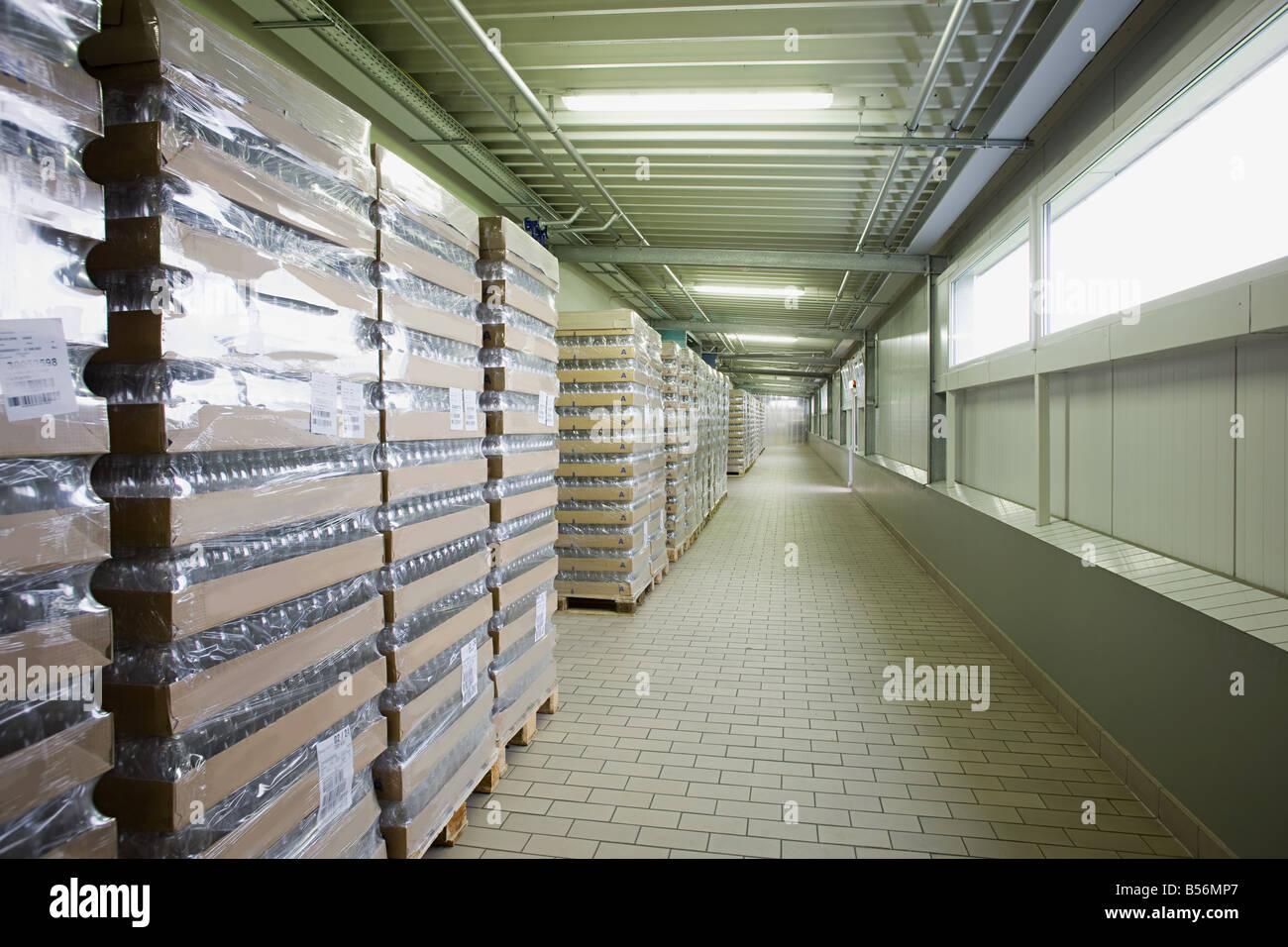 Fila de existencias en un almacén de palets Imagen De Stock