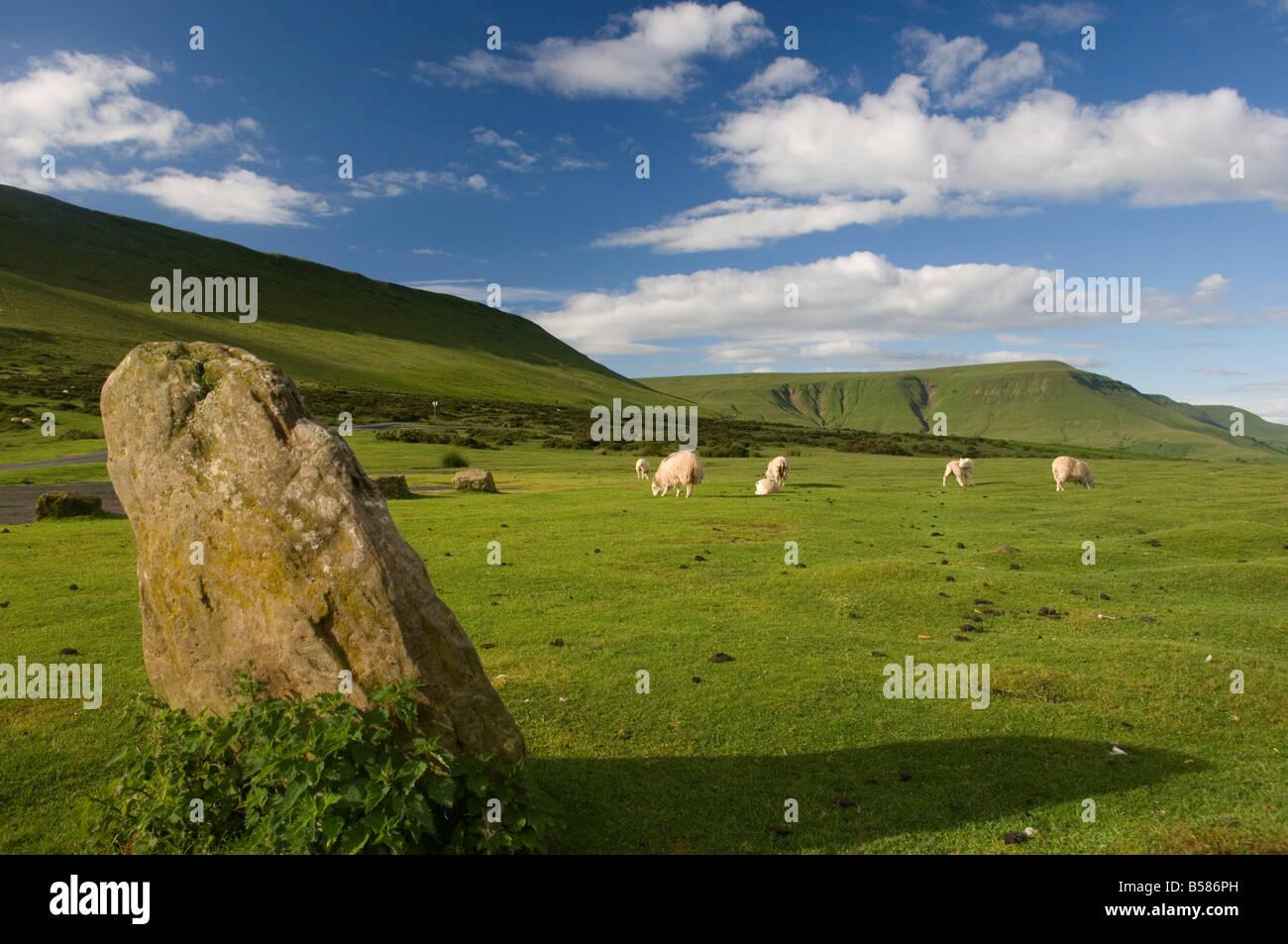 Bluff, cerca de heno heno en Wye, Brecon Beacons, Powys, Gales, Reino Unido, Europa Foto de stock