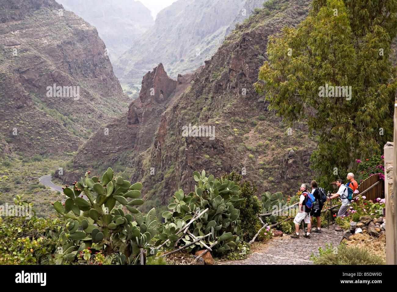 Experiencias de Senderismo en Gran Canaria