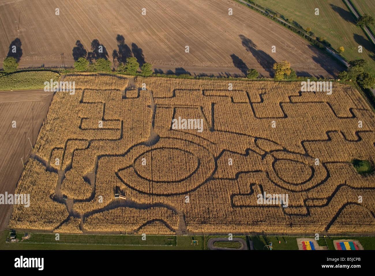 Laberinto en el campo de maíz Norfolk UK Octubre Imagen De Stock