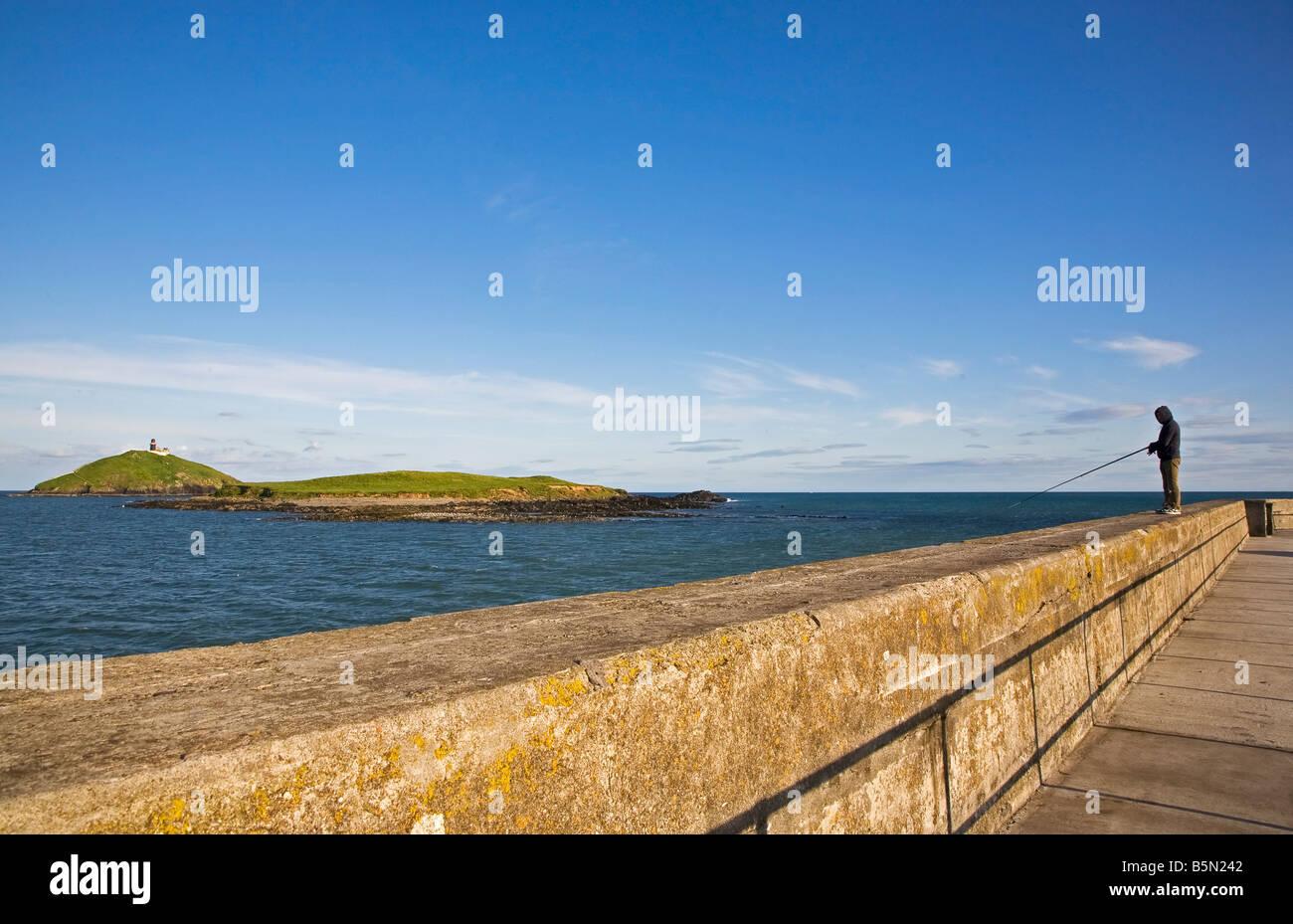 La pesca marina con caña de Ballycotton Harbour Wall, Condado de Cork, Irlanda Imagen De Stock