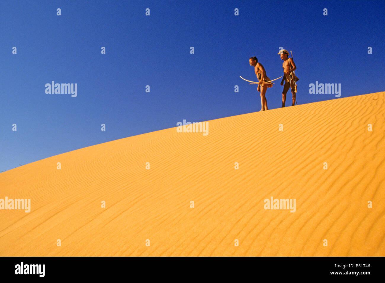 Bushman (San), los hombres en una duna de arena Imagen De Stock