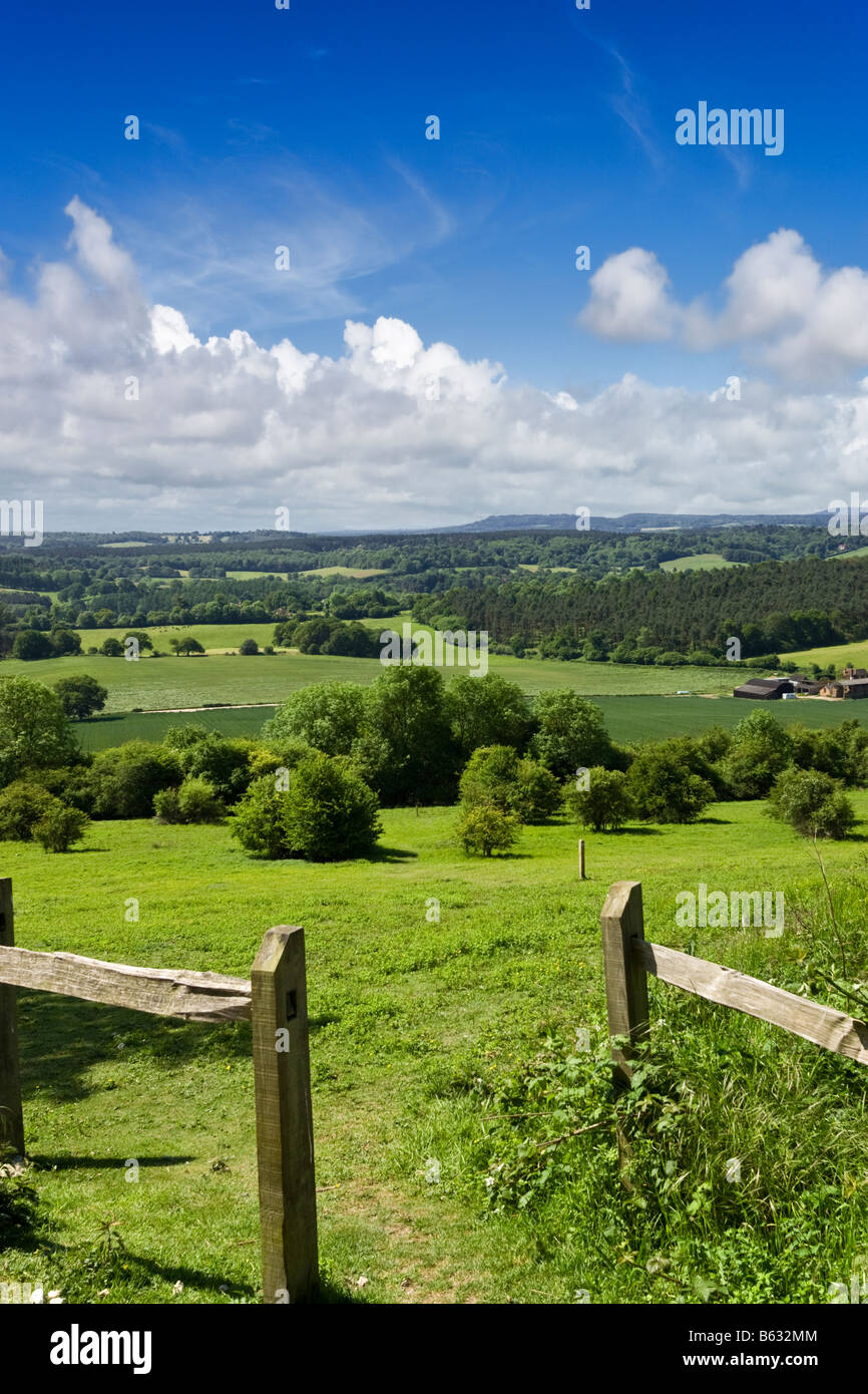 Surrey Hills UK - campiña inglesa - North Downs camino mirando hacia el South Downs, Newlands Corner, Surrey Imagen De Stock