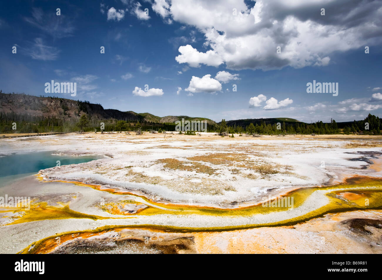 Cuenca de galleta Foto de stock